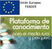 plataf_feader_tcm7-200362
